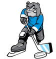 bulldog playing ice hockey vector image vector image