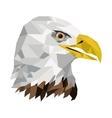geometric texture eagle icon vector image