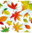 Autumn leave vector
