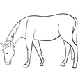 outline horse vector image