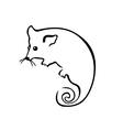 Possum vector image
