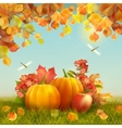 Autumn Thanksgiving Card vector image