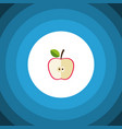 isolated jonagold flat icon fresh fruit vector image