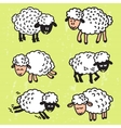 set with cute sheep EPS10 vector image vector image