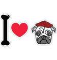 I love pug with beret vector image