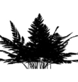 fern graphic vector image