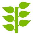 flora plant flat icon vector image