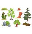 flat set of nature elements apple tree vector image