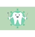 teeth is dentist symbol for healthy teeth vector image vector image