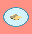 icon in flat design fashion footwear pair of men vector image