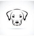 labrador puppy face on white background dog pet vector image vector image
