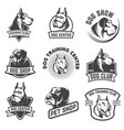 dog shop dog training center emblem templates vector image