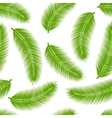 Palm leaves seamless vector image