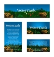 Set of cards with glade mushrooms and berries vector image