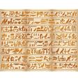 Egyptian papirus vector image