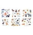 Ocean Forest Asian Australian African Animals vector image
