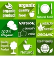 Organic flat icons vector image