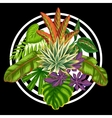 Background with stylized tropical plants and vector image