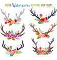 watercolor deer horns with flowers vector image