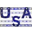 American Typography Graphics USA grunge vector image
