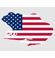 Bullfrog USA vector image