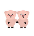 cute couple pig wild animal with face expression vector image