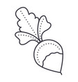 Radish line icon sign on vector image