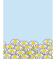 Chamomile landscape Flowers and blue sky White vector image