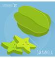 Carambola icon vector image