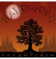 Halloween landscape with bats trees and pumpkins vector image