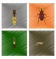 assembly flat shading style insect vector image