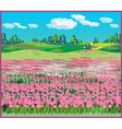 picturesque landscape with tulips vector image