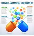 Medical vitamins and minerals infographics vector image