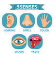 5 senses icon set touch smell hearing vision vector image