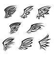 Black tribal tattoo wings with decorative feathers vector image