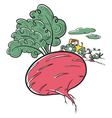 Cute doodle beet and farmer vector image
