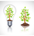 Green plant in light bulb with reflection vector image vector image
