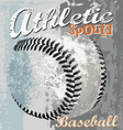 Baseball athletic sport vector image