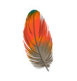 hand drawn smoth orange tropical exotic bird vector image