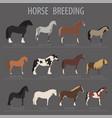 horse breeding icon set farm animal flat design vector image