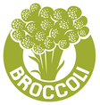 broccoli symbol vector image