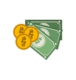 set multiple bills with coin vector image