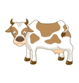 Cow vector image vector image