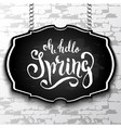 unique handwritten lettering spring drawn by vector image