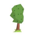 green tree colorful cartoon vector image