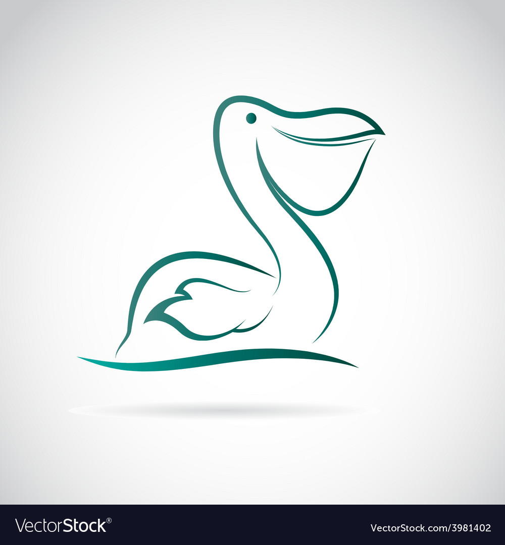 Image of an pelican vector