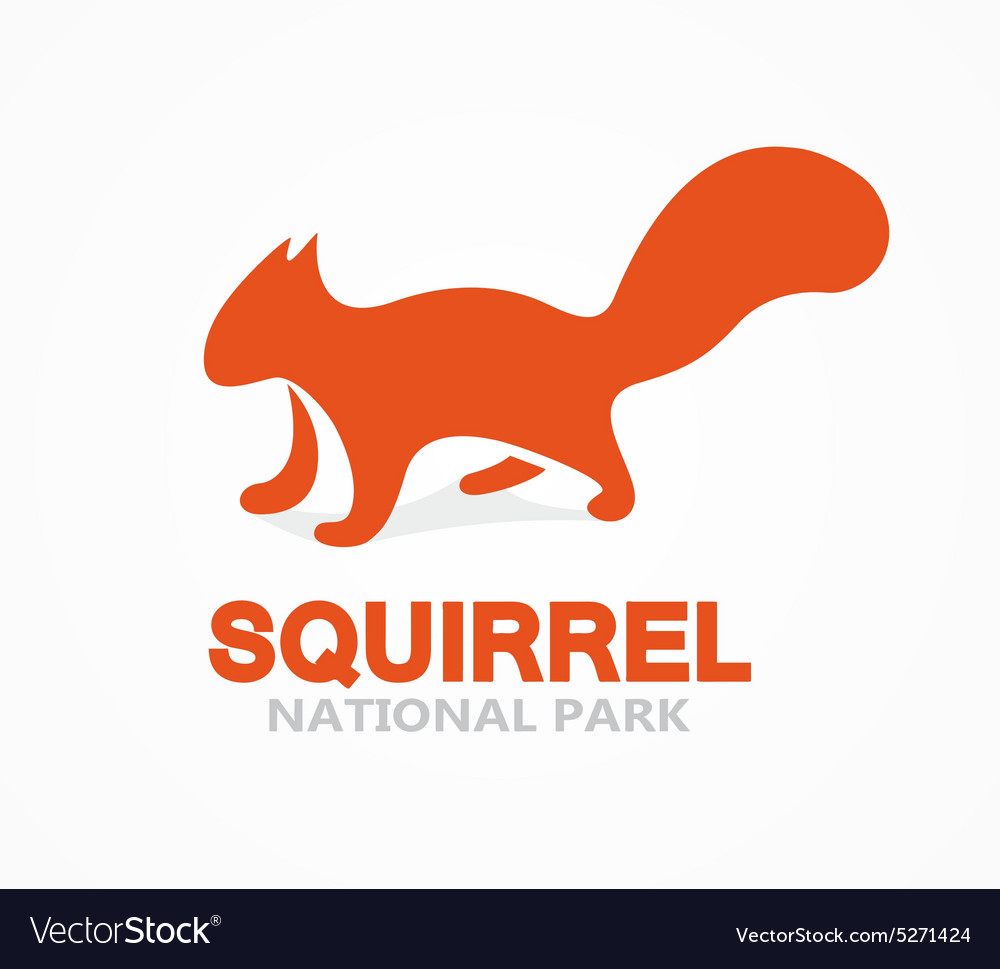 Squirrel logo or icon vector