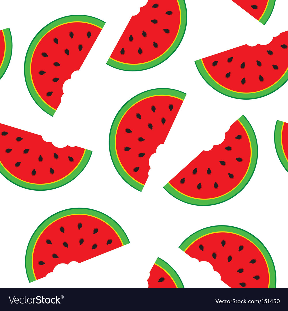 Watermelon pattern vector