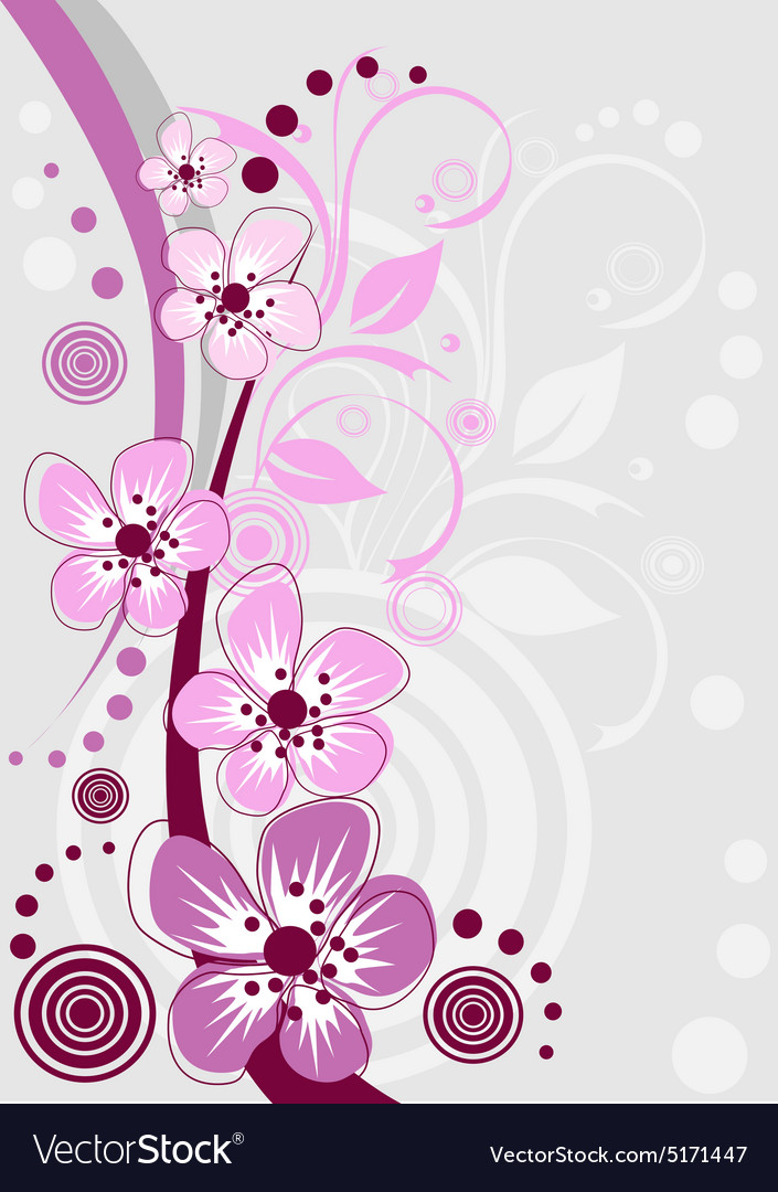 Cherry blossom sakura flowers vector