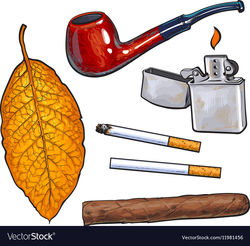 Sketch style smoking pipe lighter cigar vector